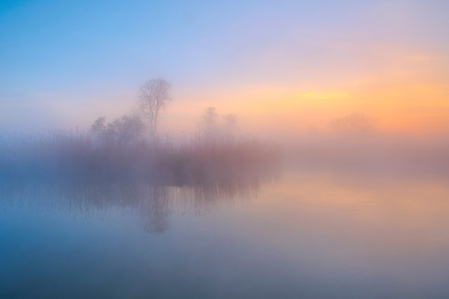 """Landscapes, winner: Kevin Prönnecke, """"The meadow awakes"""" (Elbe valley meadows). (Photo by Kevin Proennecke/2019 GDT Nature Photographer of the Year)"""