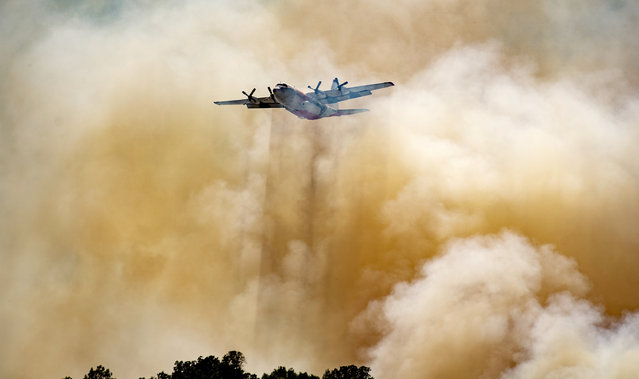 A firefighting aircraft flies through smoke after dropping fire retardant on a hillside in an attempt to box in flames from a wildfire locally called the Sand Fire in Rumsey, Calif., Sunday, June 9, 2019. (Photo by Josh Edelson/AP Photo)