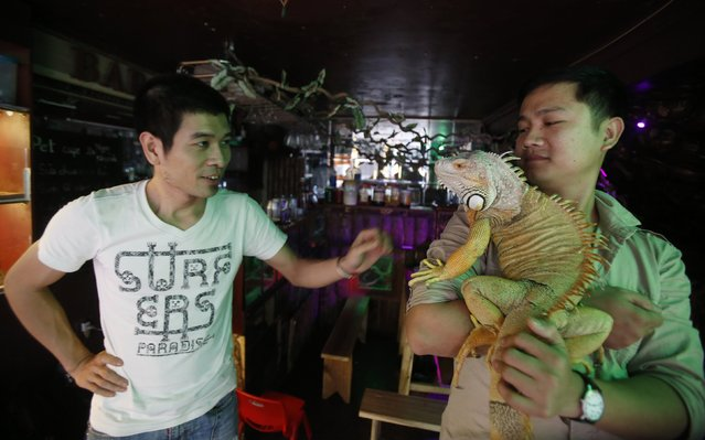 Nguyen Minh Nghia, owner of Pet Cafe, looks on as Hieu Tran, a customer, holds an iguana at the cafe in Hanoi April 1, 2014. The cafe, Hanoi's first pet cafe, houses wild animals such as snakes, hedgehogs and tarantulas and allows customers to directly interact them. (Photo by Reuters/Kham)