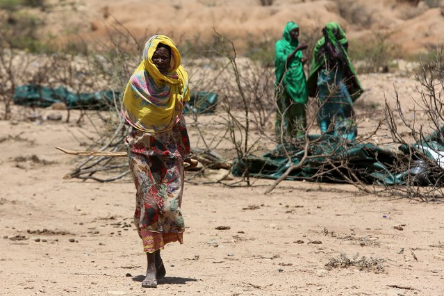 An internally displaced woman walks through a camp on the outskirts of the town of Qol Ujeed, on the border with Ethiopia, Somaliland April 17, 2016. (Photo by Siegfried Modola/Reuters)