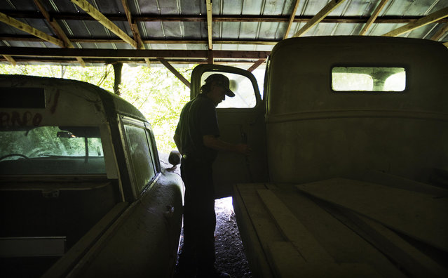 """Maintenance man Rockey Bryson looks at a 1946 Ford truck used in the movie """"Murder in Coweta County"""" starring Johnny Cash and Andy Griffith as it sits at Old Car City, the world's largest known classic car junkyard Thursday, July 16, 2015, in White, Ga. """"There's a lot of them sitting back here I don't want to see going to rust"""", Bryson said. """"It's kind of sad to see them. There's a lot of history here"""". (Photo by David Goldman/AP Photo)"""