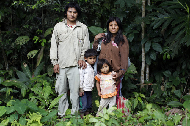 Machiguenga indigenous people Antonio Aguilar (L) and Jesica Araoz pose with their children Manuel and Betsabe close to their home in Shipetiari, a village near the Alto Madre de Dios River, May 25, 2014. Isolated Peruvian tribes like Mashco Piro have clashed in the past with loggers, poachers and drug traffickers who invaded their jungle enclaves, but anthropologists say the lure of modern tools is now tempting them closer than ever to far-flung villages and tourist camps. (Photo by Enrique Castro-Mendivil/Reuters)