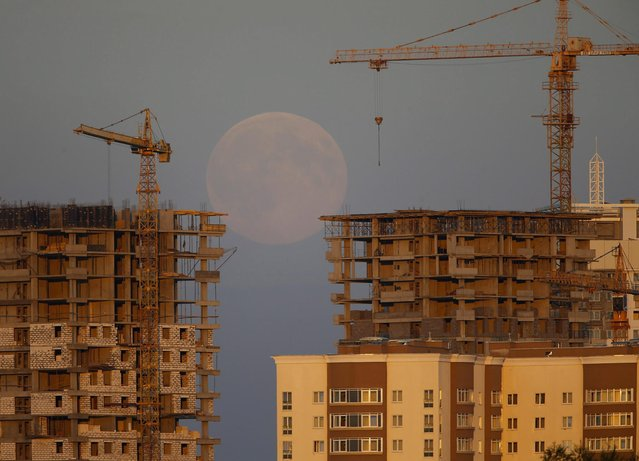 The supermoon is seen behind a building site in Minsk, August 10, 2014. The astronomical event occurs when the moon is closest to the Earth in its orbit, making it appear much larger and brighter than usual. (Photo by Vasily Fedosenko/Reuters)