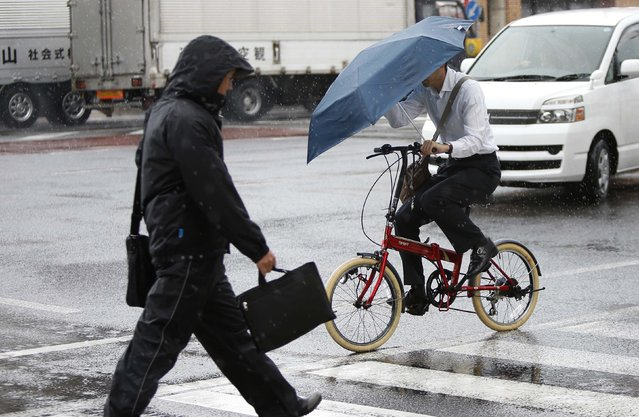 A pedestrian wearing a rain jacket and a man holding an umbrella while riding on a bicycle, cross a street during rain caused by Typhoon Phanfone in Tsu, Mie Prefecture, western Japan  October 6, 2014. (Photo by Yuya Shino/Reuters)