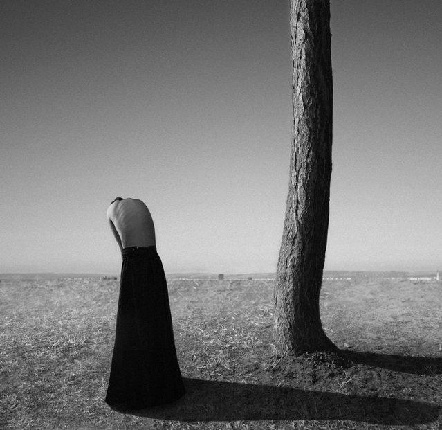 Silence. (Noell S. Oszvald)