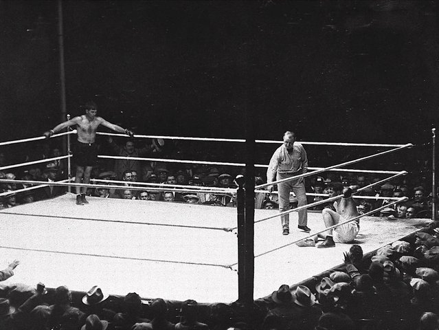 Referee Dave Berry delivers the count over downed champion Gene Tunney September 22, 1927 as challenger Jack Dempsey stands in corner at left during their heavyweight title rematch at Soldier's Field in Chicago, Ill. Tunney got up at nine and went on to win the championship. (Photo by AP Photo)