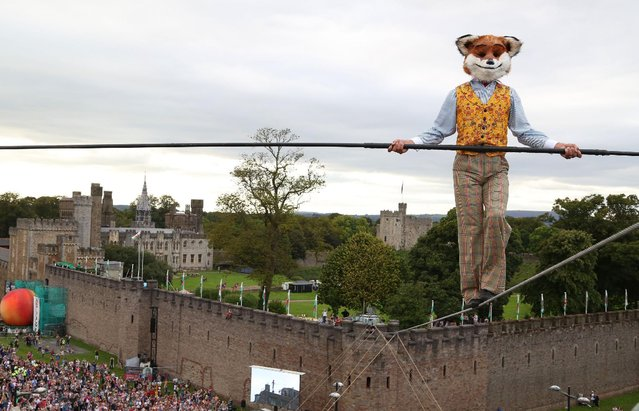 """High wire walker Chris Bullzini walks from Cardiff Castle, dressed as the character Fantastic Mr Fox, during the """"Roald Dahl's City of the Unexpected"""" event, in Cardiff, Saturday, September 17, 2016,  presented by Wales Millennium Centre and National Theatre Wales to celebrate the 100th birthday of author Roald Dahl. (Photo by Geoff Caddick/PA Wire via AP Photo)"""