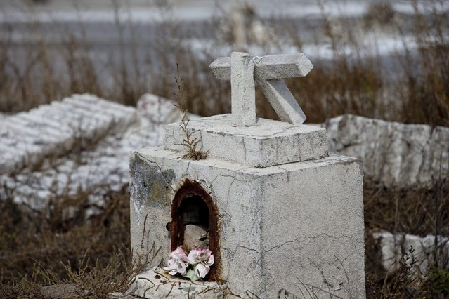 In this May 7, 2013 photo, a cross lies broken on a tomb in the abandoned town of Epecuen, Argentina. This town was once home to 1,500 residents, but they were forced to leave in 1985 when heavy rains made the nearby lake overrun its banks and submerged the town beneath almost 30 feet of water. The town was never rebuilt as the water started to recede. (Photo by Natacha Pisarenko/AP Photo)