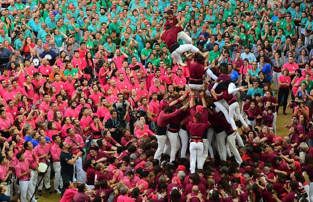 """Members of the """"Xics de Granollers"""" human tower team fall as they attempt to form a """"castell"""" during the XXVI human towers, or castells, competetion in Tarragona on October 1, 2016. (Photo by Lluis Gene/AFP Photo)"""