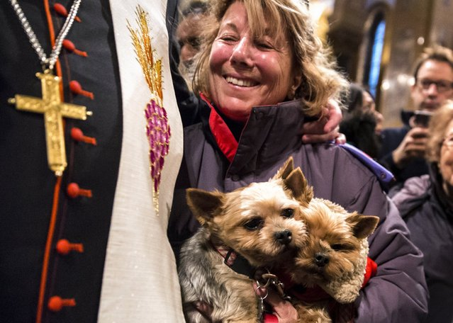 """An owner smiles as she has her pet dogs blessed by a church official during the """"Blessing of the Animals"""" at the Christ Church United Methodist in Manhattan, New York December 7, 2014. (Photo by Elizabeth Shafiroff/Reuters)"""