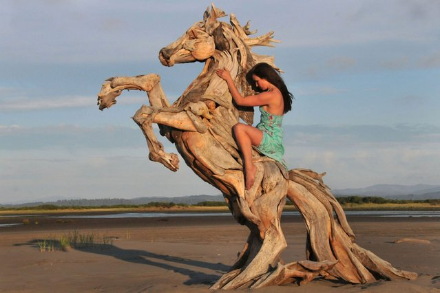 A horse sculpture entirely made from driftwood by artist Jeffro Uitto. (Photo by Jeff Uitto/Caters News)