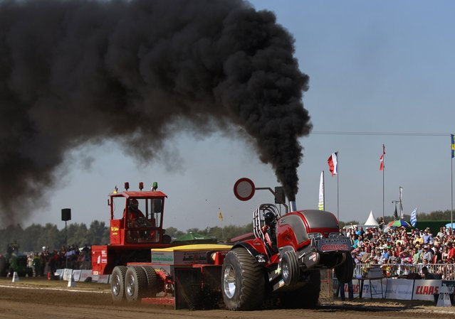 A driver competes in his tractor during the Tractor Pulling Euro Championships in the western German town of Fuechtorf September 9, 2012. Eighty teams from across Europe participated in the two-day competition where high-powered tractor prototypes must pull a trailer down a 100-metre (328 ft) track as far as possible. (Photo by Ina Fassbender/Reuters)