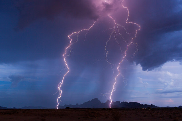 A lightning pictured striking near Tonopah on July 17, 2015 in Arizona, United States. Huge hail, terrifying lighting and giant supercells the size of buildings – these incredible images depict a year in the life of a storm chaser. (Photo by Mike Olbinski/Barcroft Media)