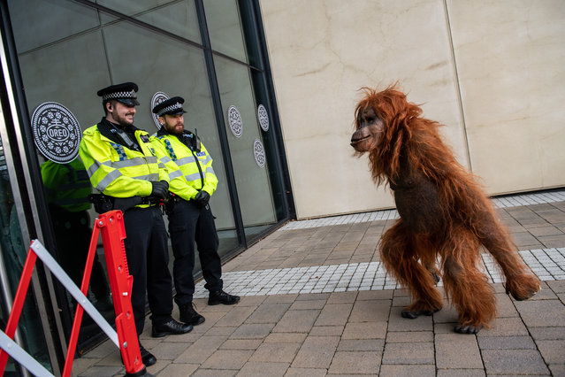 Police officers laugh as Greenpeace activists create a burnt smoldering rain-forest with a lifelike animatronic orangutan at the headquarters of Oreo cookies, in protest over their use of palm oil on November 19, 2018 in Uxbridge, England. Greenpeace is calling on the makers of Oreo to stop buying palm oil from Wilmar, the largest palm oil producer, who they say have destroyed 70,000 hectares of Indonesian rain forest in the last two years. (Photo by Chris J. Ratcliffe for Greenpeace via Getty Images)