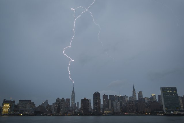 A bolt of lightning strikes the Empire State Building during a summer rain storm in New York July 15, 2014. (Photo by Lucas Jackson/Reuters)