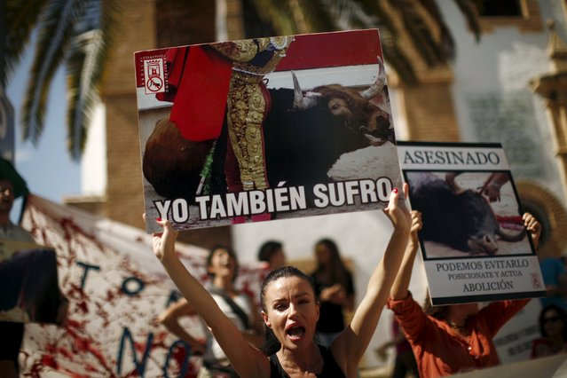 """Anti-bullfighting protesters shout slogans during an anti-bullfighting protest before the start of a bullfight in downtown Ronda, near Malaga, southern Spain, September 6, 2015. The banners read: """"I also suffer"""" (L) and """"Murdered. We can avoid it, position yourself and act. Abolition"""". (Photo by Jon Nazca/Reuters)"""