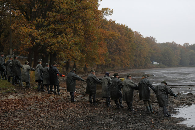 Fishermen pull on a net during a traditional fish haul of the Horusicky pond near the town of Veseli nad Luznici, Czech Republic, Tuesday, October 24, 2017. Southern Bohemia, where the Horusicky pond is located, with its elaborate network of ponds is at the center of the local carp universe. (Photo by Petr David Josek/AP Photo)