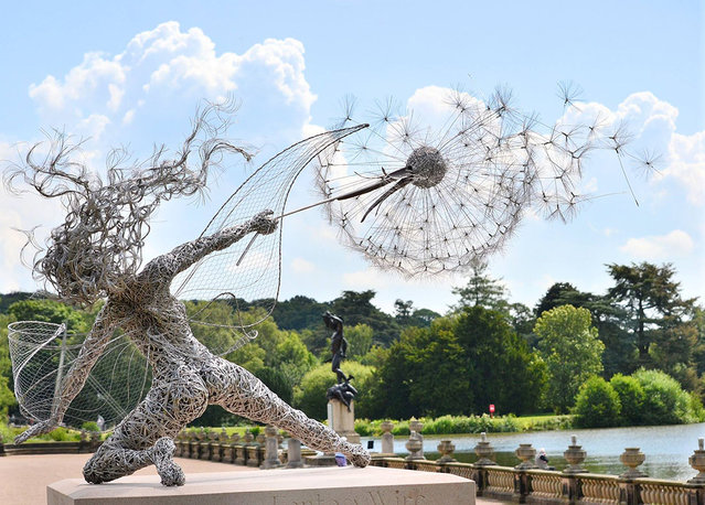 Fantasy Wire Fairies Sculptures By Robin Wight