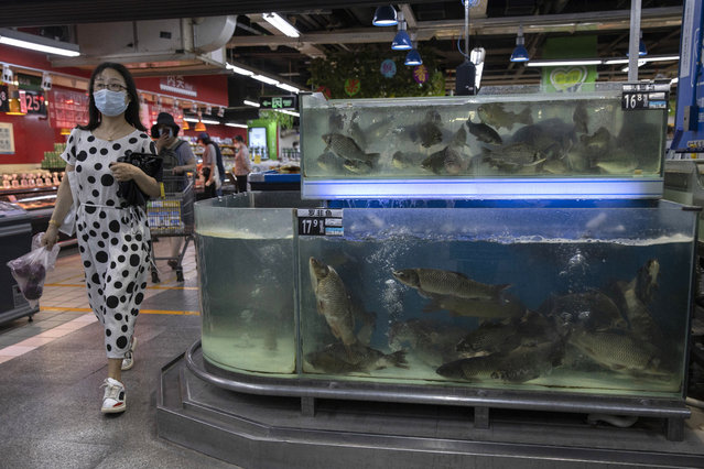 A resident wearing a face mask to curb the spread of the coronavirus walk passes live fish on display at a supermarket in Beijing, Monday, June 15, 2020. (Photo by Ng Han Guan/AP Photo)