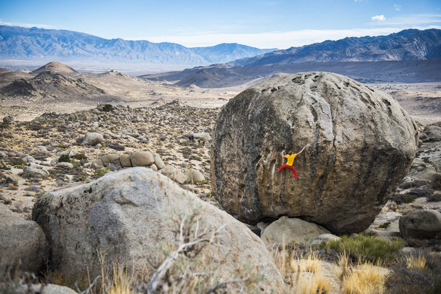 """Alex Megos climbs """"Beekeepers Apprentice"""" (V6) at the Buttermilk Boulders near Bishop, CA, USA on November, 2015. (Photo by Ken Etzel/Red Bull/SWNS.com)"""