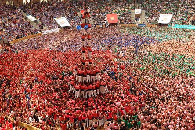 """Members of the """"Colla Vella dels Xiquets de Valls"""" human tower team form a """"castell"""" (human tower) during the XXVI human towers, or """"castells"""", competetion in Tarragona on October 2, 2016. (Photo by Lluis Gene/AFP Photo)"""