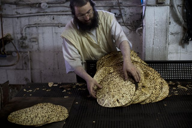 An jltra-Orthodox Jewish man prepares special matzoh, a traditional handmade Passover unleavened bread, at a bakery in Bnei Brak near Tel Aviv, Israel. Tuesday, March 31, 2015. Jews are forbidden to eat leavened foodstuffs during the Passover holiday. Passover celebrates the biblical story of the Israelites' escape from slavery and exodus from Egypt. (Photo by Oded Balilty/AP Photo)