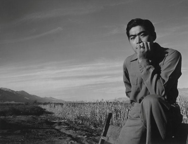 Tom Kobayashi seated in a field, his elbow resting on his knee and his hand on his chin, at the Manzanar War Relocation Center in California, in this 1943 handout photo. (Photo by Courtesy Ansel Adams/Library of Congress, Prints and Photographs Division/Reuters)