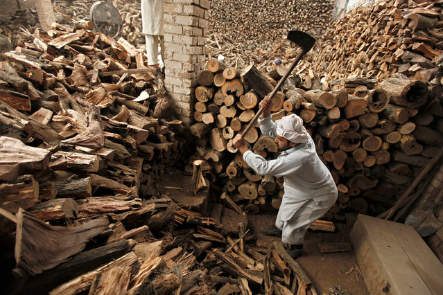 A laborer cuts woods to be used as fuel source at a shop on the eve of the International Labor Day in Peshawar, Pakistan April 30, 2015. (Photo by Bilawal Arbab/EPA)