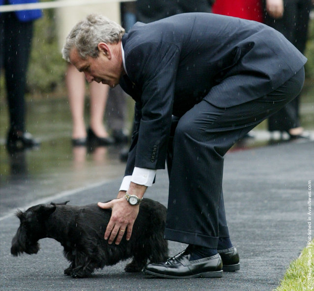 U.S. President George W. Bush tries to hold his dog Barney