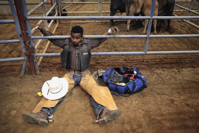 Bull rider Anthony Monts Jr. stretches before his ride at the Bill Pickett Invitational Rodeo on March 31, 2017 in Memphis, Tennessee. (Photo by Scott Olson/Getty Images)