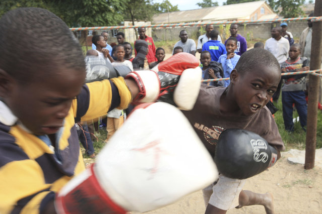 In this Sunday, March 11, 2017 photo, children fight in a boxing ring in Chitungwiza, Zimbabwe. (Photo by Tsvangirayi Mukwazhi/AP Photo)