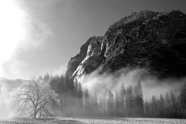 """Misty Yosemite Valley"". Late spring snow fall burning off in Yosemite Valley. Photo location: Yosemite National Park, California. (Photo and caption by Laura Hoffner/National Geographic Photo Contest)"