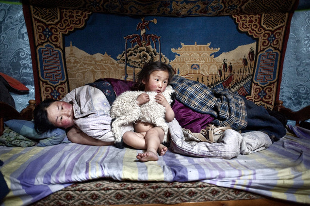 Asia, Mongolia, March 19, 2011. In the photo Erdene Tuya together with her 3 years old son called Tuvchinj (he hugs a young sheep which sleeps with them)  just woke up while her husband Batgargal went out to have a look at the herd with the other son called Azjargal, 6 years old. In Mongolia's Arkhangai province, the Tsamba family lives on the edge, struggling through harsh winters alongside their herd of sheep. (Photo by Alessandro Grassani)