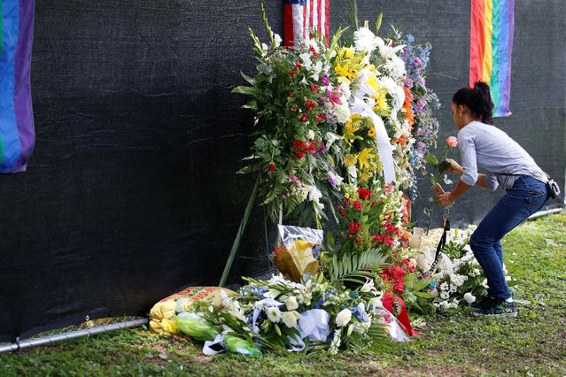 A mourner places a flower near the grave of Pulse night club shooting victim Anthony Luis Laureano Disla after his funeral in Orlando, Florida, U.S., June 17, 2016. (Photo by Carlo Allegri/Reuters)