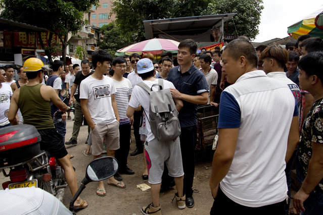 A dog lover activist, in blue hat, is confronted by dog sellers and locals as he is urged to leave the market during a dog meat festival in Yulin in south China's Guangxi Zhuang Autonomous Region, Tuesday, June 21, 2016. (Photo by Andy Wong/AP Photo)