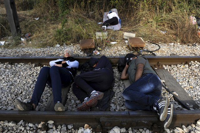 Migrants rest on a railway track at the Greek-Macedonian border, August 21, 2015. (Photo by Alexandros Avramidis/Reuters)
