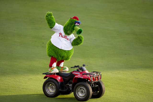 The Phillie Phanatic dances on his ATV prior to the game between the Seattle Mariners and Philadelphia Phillies on August 18, 2014 at Citizens Bank Park in Philadelphia, Pennsylvania. (Photo by Mitchell Leff/Getty Images)
