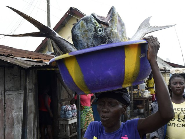 A woman carries fishes on October 2, 2014 in Monrovia. The UN launched a mission to prevent the worldwide spread of Ebola as the US hunted for people who came in contact with the first African diagnosed with the deadly virus outside the continent. (Photo by Pascal Guyot/AFP Photo)