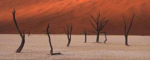 """Silent Soldiers"". Deadvlei, Namibia. (Photo by Stuart Bellamy/Epson International Pano Awards 2017)"