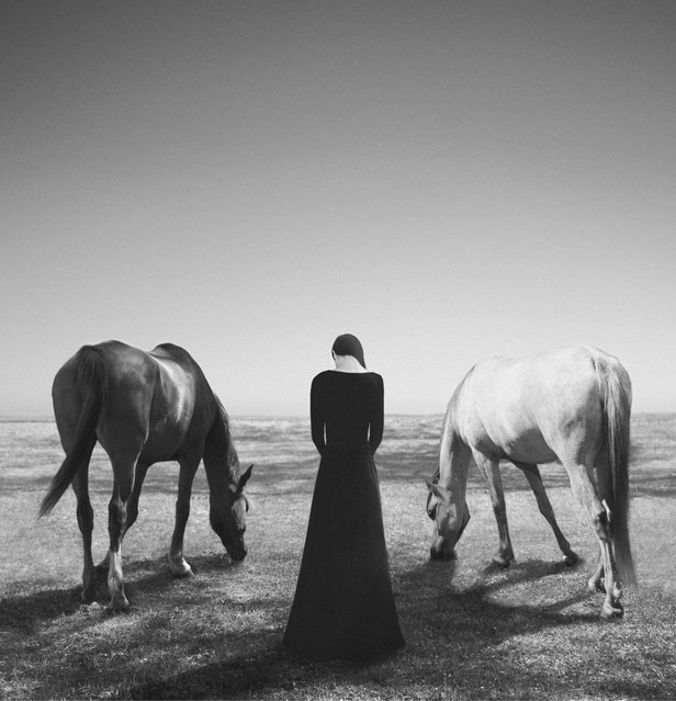 The good, the bad and the lost. (Noell S. Oszvald)