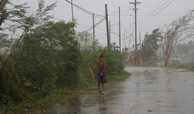A resident walks on an empty road as Typhoon Haima strikes Laoag city, Ilocos Norte in northern Philippines, October 20, 2016. (Photo by Erik De Castro/Reuters)