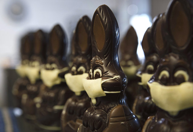 In this photo taken on Wednesday, April 8, 2020, chocolate rabbits with face masks are lined up at the Cocoatree chocolate shop in Lonzee, Belgium. As all non-essential shops in Belgium have been closed due to the outbreak of COVID-19, many chocolatiers have had to resort to online sales, home delivery or pick up on site. (Photo by Virginia Mayo/AP Photo)