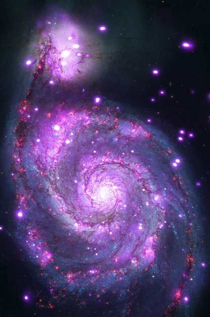 "A undated handout image made available by NASA on 26 January 2015 showing a spiral galaxy similar to the Milky Way glittering with hundreds of X-ray points of light. The galaxy is officially named Messier 51 (M51) or NGC 5194, but often goes by its nickname of the ""Whirlpool Galaxy"". Like the Milky Way, the Whirlpool is a spiral galaxy with spectacular arms of stars and dust. (Photo by EPA/NASA/CXC)"