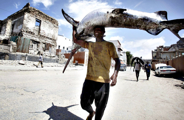 A fisherman carries a swordfish on his head from the Indian Ocean waters to the market in Somalia's capital Mogadishu March 31, 2014. (Photo by Ismail Taxta/Reuters)