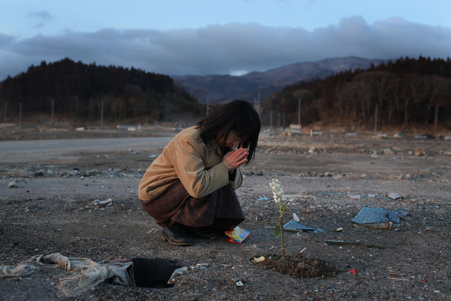 Keiko Suzuki, 40 prays at the site of her uncle's home on March 11, 2012 in Rikuzentakata, Japan. Her uncle Kazuyoshi Sugawara was killed when his home was swept away by the tsunami last year. On the one year anniversary, the areas most affected by last year's March 11, 2011 earthquake and subsequent tsunami that left 15,848 dead and 3,305 missing according to Japan's National Police Agency, continue to struggle. Thousands of people still remain without homes living in temporary dwellings. The Japanese government faces an uphill battle with the need to dispose of rubble as it works to rebuild economies and livelihoods. Across the country people are taking part in ceremonies to pay respects to the people who lost their lives. (Photo by Chris McGrath/Getty Images)