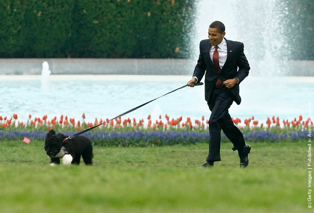 U.S. President Barack Obama runs with his family's dog, a Portuguese water dog named Bo