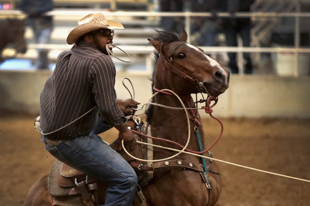 Aaron Johnson competes in the calf roping event at the Bill Pickett Invitational Rodeo on March 31, 2017 in Memphis, Tennessee. (Photo by Scott Olson/Getty Images)
