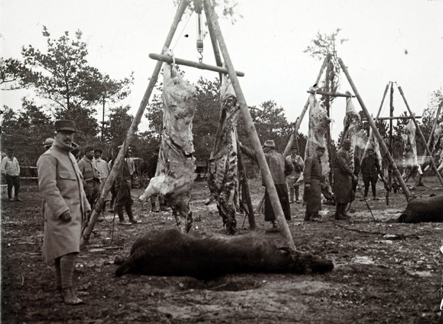 An undated archive picture shows carcasses of animals strung up before being cooked for soldiers, on the Champagne front, eastern France. (Photo by Collection Odette Carrez/Reuters)