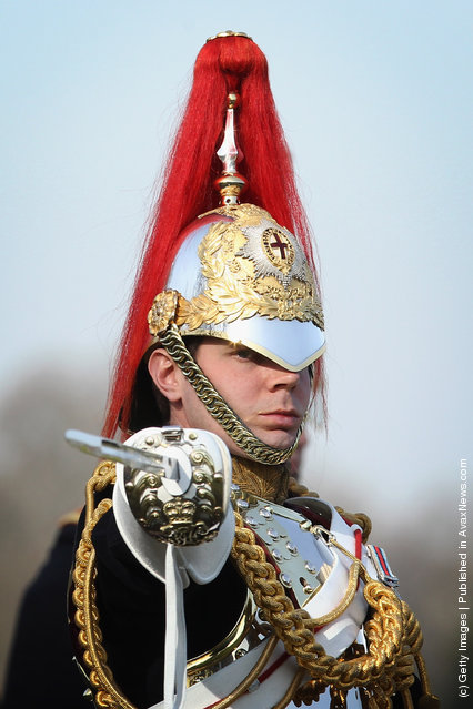 A member of the Household Cavalry parades at the 'Major General's Review' in Hyde Park