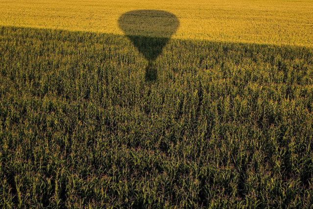 The shadow of a hot air balloon is cast on a field as it flies during the 19th FAI Hot Air Balloon European Championship in Debrecen, 226 kms east of Budapest, Hungary, 12 August 2015. Hundred and two contestants of twenty-three countries participate in the event through 18 August. (Photo by Zsolt Czegledi/EPA)
